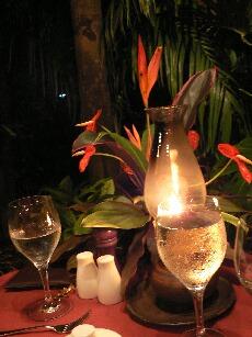 Starlight Dinner 2