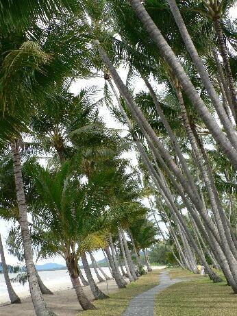 ANG Pal, beach