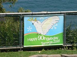 Taronga Zoo Bird Show2
