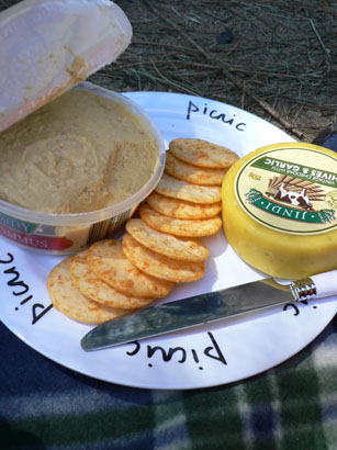 OP-picnic