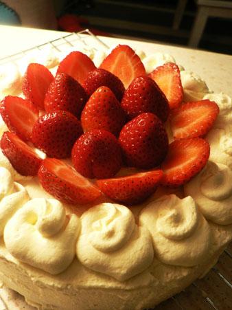 シュートケーキ