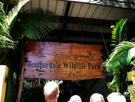 featherdale wildlife park2