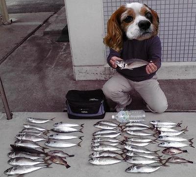 2009年初釣り
