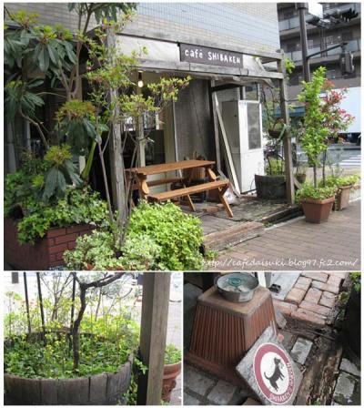 Cafe shibaken◇テラス