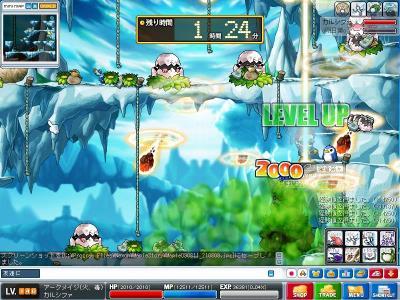 Maple090811_210810.jpg