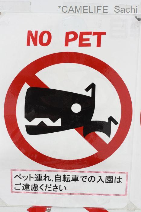 NO PET