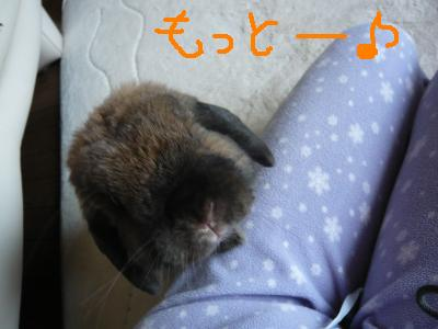ぱぱいあ5