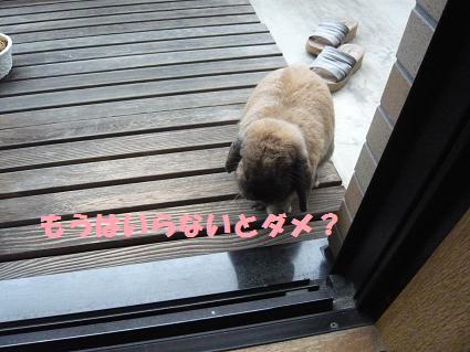べらんぽ3