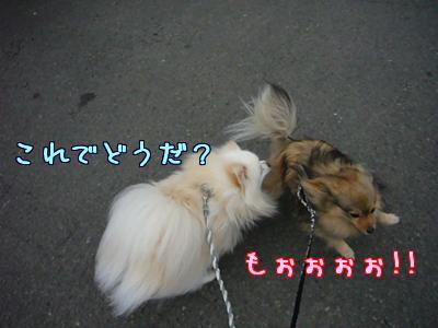 キャラ変10