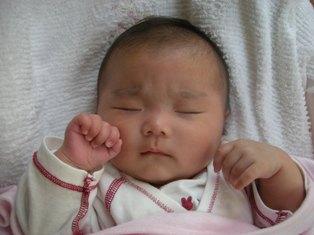 きぃちゃん(=^ェ^=)の寝顔