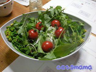 白ねぎと貝われ大根とルッコラのサラダ