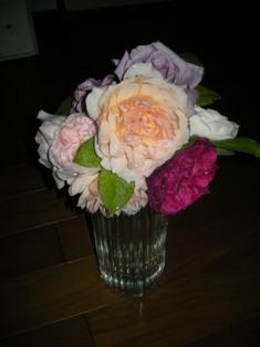 我が家のバラ2