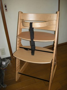 きぃちゃん(=^ェ^=)の椅子