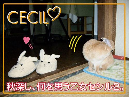 s-毛束作り1