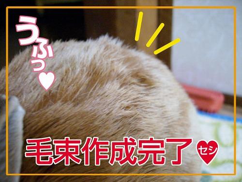 s-毛束作り3