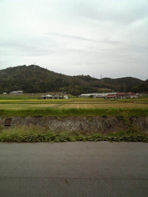 広島県919