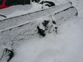 ランチの間に雪が・・・!