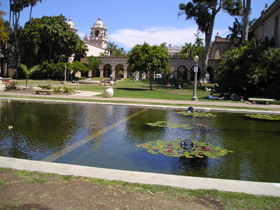 BalboaPK_Lotus Pond