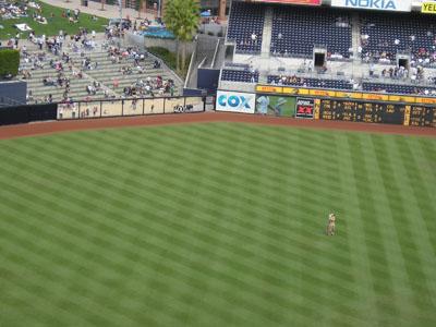 KE_BaseballGame2