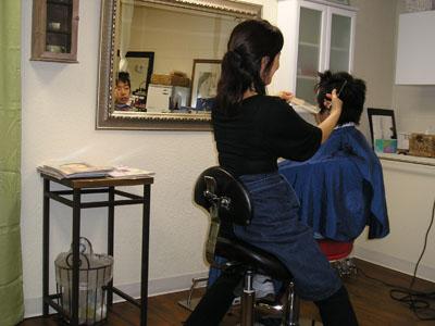 K_Haircut1