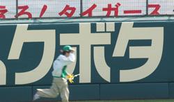 甲子園5月11日17