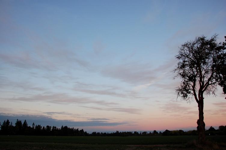 農場で夕焼け3