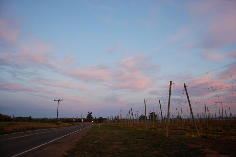 農場の夕日2