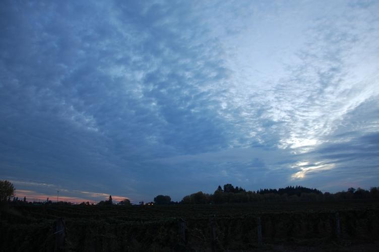 農場の夕日6