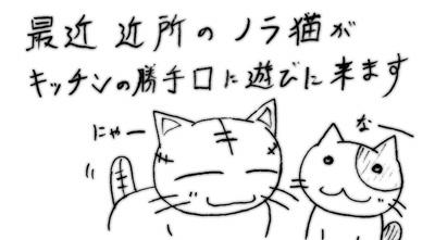 070222_neko_1.jpg