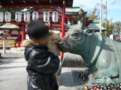 牛さんとのちゅーはいやぁ!
