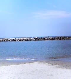 20060707-1.jpg