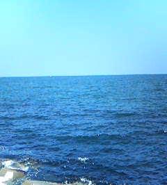20060707-2.jpg