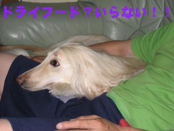 20060925224722.jpg