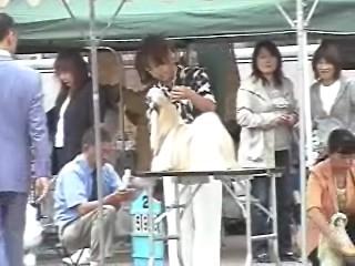 2009-7-25rikku 009_0001