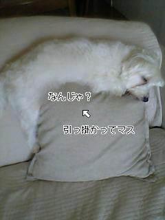 20071013223754