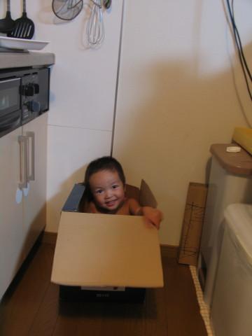 箱入り息子でした~(笑)