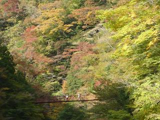 紅葉と赤鉄橋