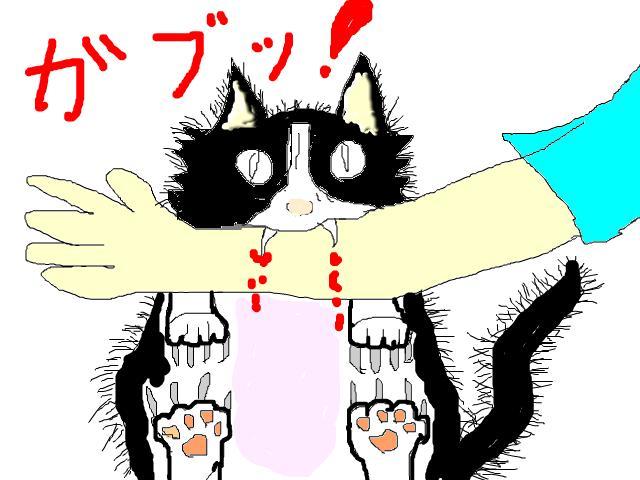 snap_chibitaseiko_200812222955.jpg