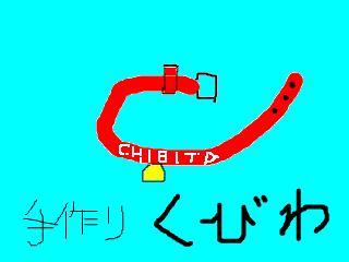 snap_chibitaseiko_200812313205.jpg