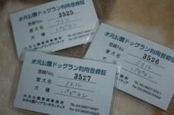 081109 mizumoto3