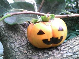 ハロウイン柿