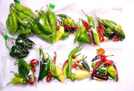 090918-PepperS.jpg