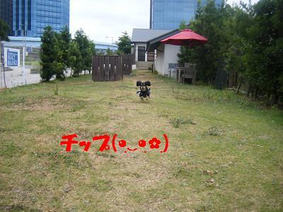 resize2221.jpg