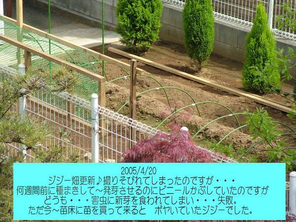 050420.jpg