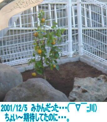 20011205.jpg