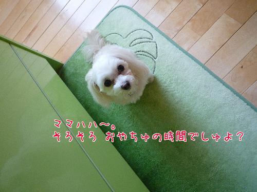 gd_2I9gA.jpg