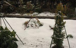 IMG_4423雪