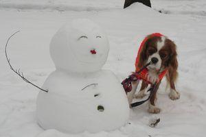 IMG_4606雪だるま1