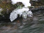 IMG_4641氷