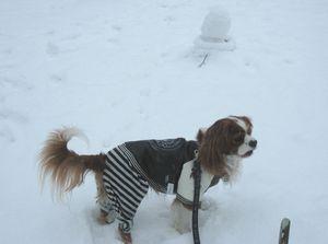 IMG_4655雪だるま